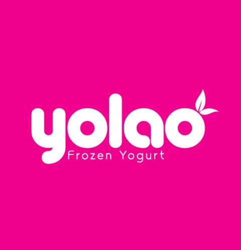 YOLAO_final_1version